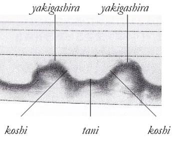 koshitani