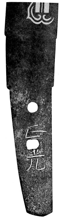 Daruma1